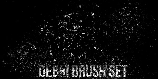 Debri-Brush-Set